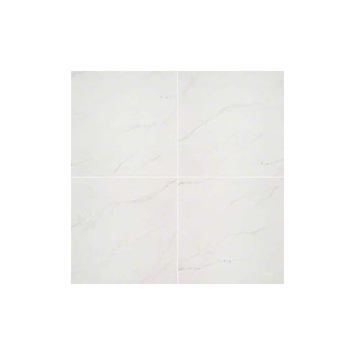 Aria Ice white Porcelain  24X24